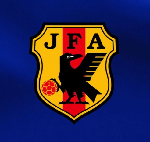 サッカー日本代表・ブラジル戦