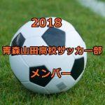 青森山田高校サッカー部のメンバー2018!出身中学(チーム)や注目選手も