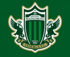 松本山雅FC移籍情報2019